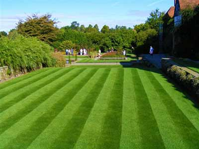 Beautifully striped lawn
